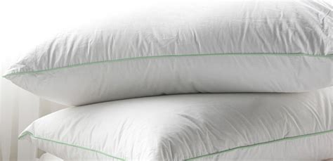 Buy Bed Pillows Buy Pillows Hypoallergenic Bed Pillows The Big