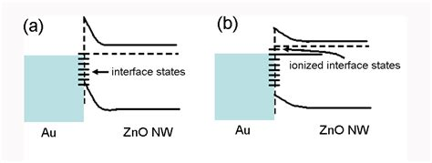 schottky barrier photodiode junction properties and applications of zno single nanowire based schottky diode intechopen