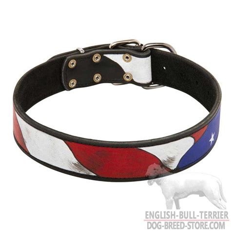 Handmade Leather Collars And Leashes - get handcrafted leather bull terrier collar american