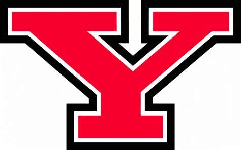 Y Logo stem dean martin abraham named interim provost at ysu