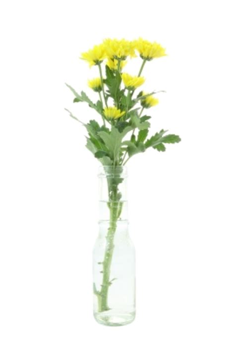 Home Decor Articles by Vase Simple Flower Easy Simple No Skill Flower