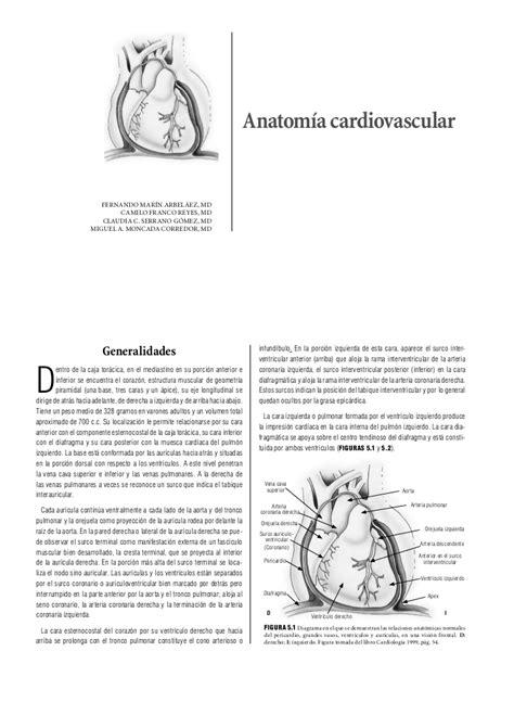 libro anatoma para posturas de libro de anatomia y fisiologia cardiaca