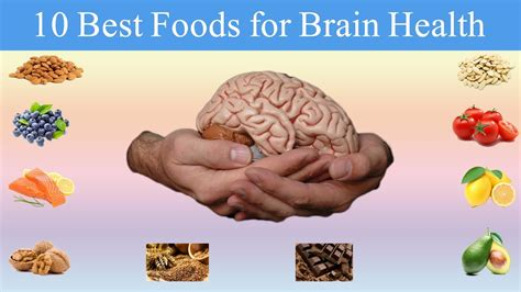 foods for brain foods 10 healthy foods you should be for