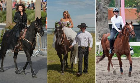 uk celebrities who love horses heartland star amber marshall and other celebrities who