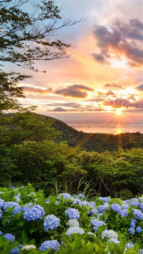 sunset view  hydrangea hills matsuzaki shizuoka