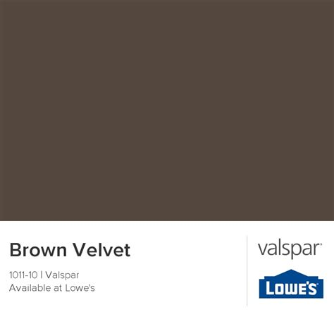 brown velvet from valspar color