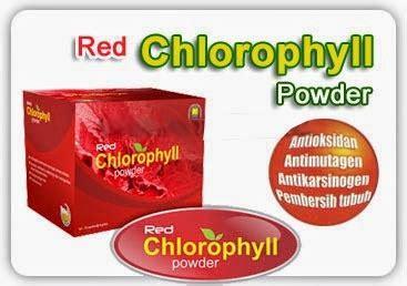 Chlorophyllin Powder Redco chlorophyllin powder pupuk organik cair