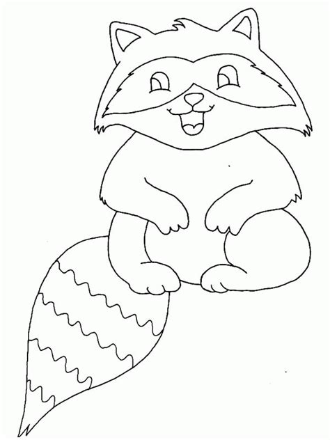 baby raccoon coloring pages coloring page of a raccoon az coloring pages