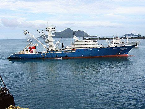 fishing boat for sale seychelles bluefin tuna doesn t stand a chance against eu s