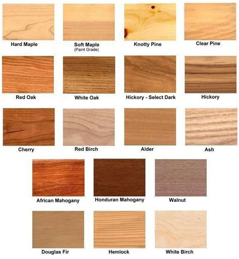 types of wood for kitchen cabinets how to build exotic wood species pdf plans