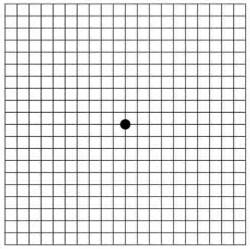 Magnetic Chess amsler grid eye test brightfocus foundation