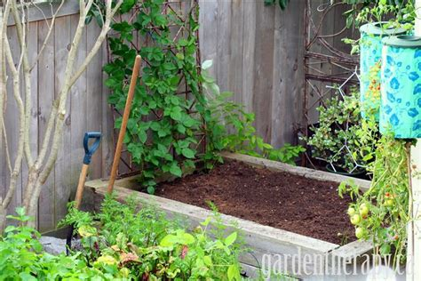 preparing a vegetable garden bed converting lawn into raised garden beds without waste