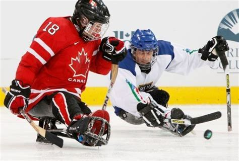 Save Our National Hockey Essay by About Hockey Essay Help