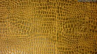 Download Crocodile Leather Wallpaper Gallery