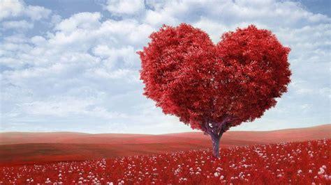 imagenes originales bonitas relaciones de pareja frases de amor bonitas y originales