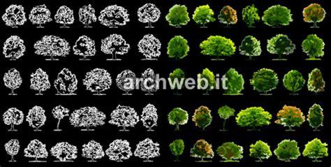 vasi fiori dwg tavoli mediaworld piante grasse dwg