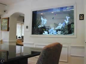 Unusual Sofa Beds Uk 224 Gallon Marine Fish Tank Aquarium Design Marine