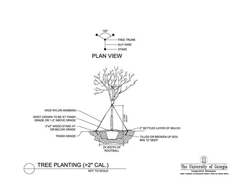 Tree Planters Notes by Gis Gps Resources For Landscape Management And