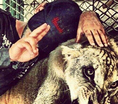 imagenes de el chapo con frases narcos mexicanos ostentan en las redes sociales su riqueza