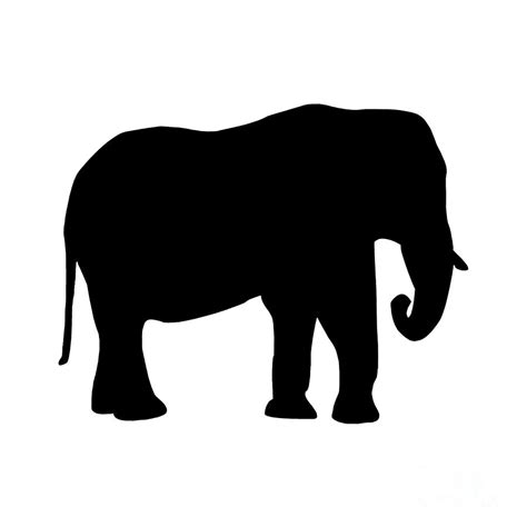 Home Decor Elephants by Elephant In Black And White Digital Art By Jackie Farnsworth