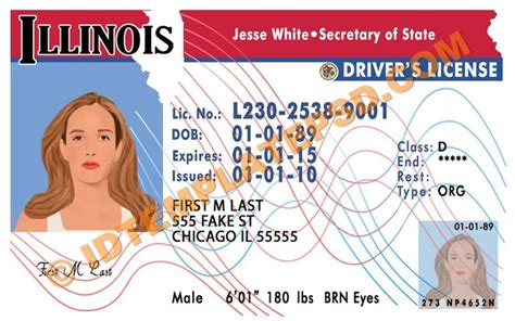 state id template this is illinois usa state drivers license psd
