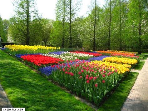 spring garden ideas spring garden ideas on pinterest photograph spring garden