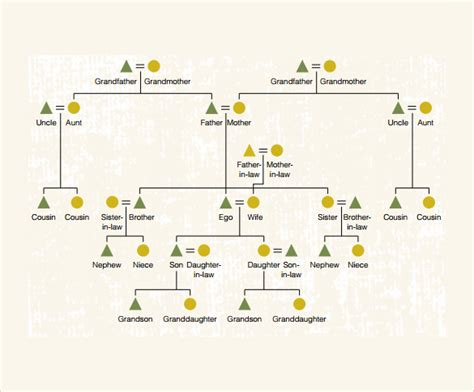 kinship chart template sle kinship diagram template 9 free documents in pdf