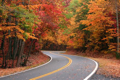 of kentucky colors discover the best ways to see the fall colors in kentucky