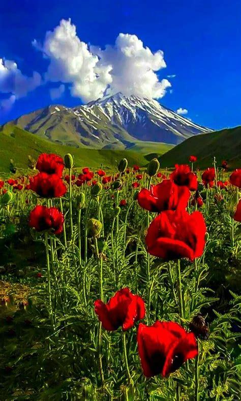 beautiful nature beautiful nature pics