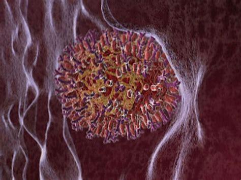 flu viruses attack