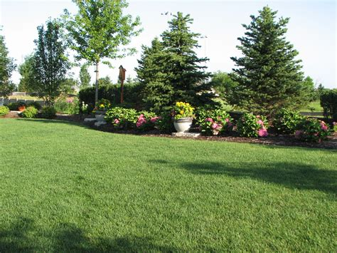 Backyard Trees Landscaping Ideas Backyard Landscaping For Privacy Existing Home Landscaping Elemental Landscapes Ltd