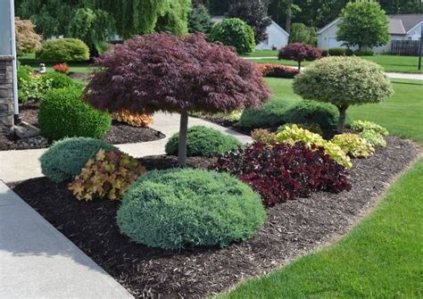 17 best landscaping ideas on pinterest front landscaping ideas garden landscaping and front