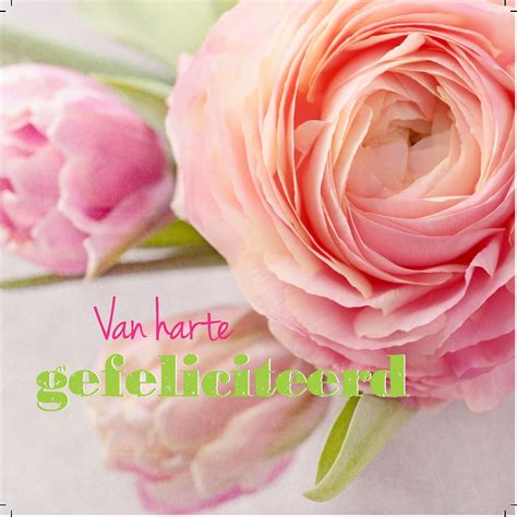 afbeelding verjaardag bos bloemen spaans van harte gefeliciteerd met je verjaardag tekst