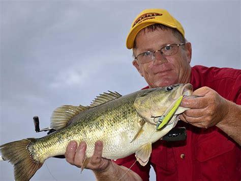 catch bass   summer  lake