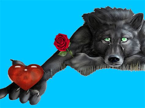 wolf heart red rose messages  lonely hearts hd wallpapers  mobile phones tablet  laptop