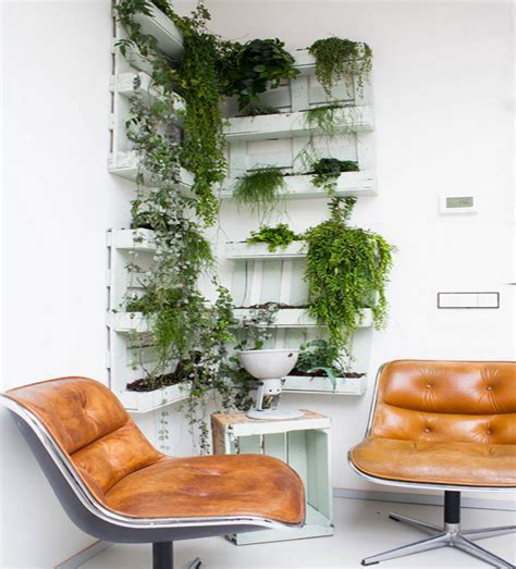 hanging plants and soil less vegetation for green homes