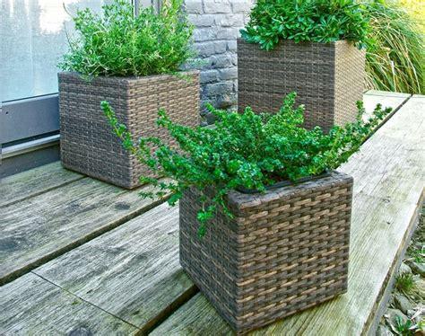 vasi giardino resina vasi resina esterno vasi i vasi in resina per esterno