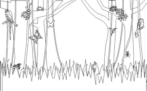 rainforest background coloring page forest woods page background coloring pages