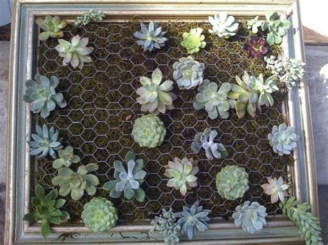 Cool Diy Green Living Wall Projects For Your Home Garden Wall Hanging