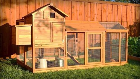 the best backyard chicken coops for small flocks in 2018