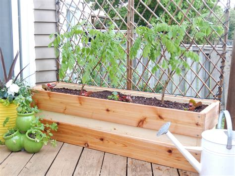 homemade planters planting for privacy diy wood planter just decorate