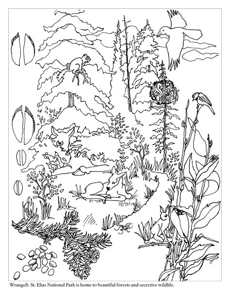 coloring pages of tundra animals tundra animals pages coloring pages