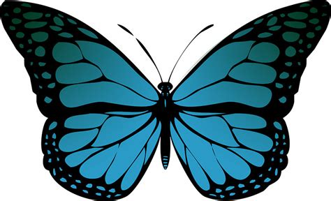 Wall Stickers Butterflies quot blue monarch butterfly quot stickers by jezkemp redbubble