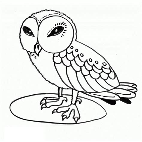 A Coloring Page Of A by Free Printable Owl Coloring Pages For
