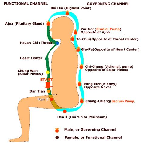 Pdf Healing Power Breath Techniques Concentration by Microcosmic Orbit In Daily