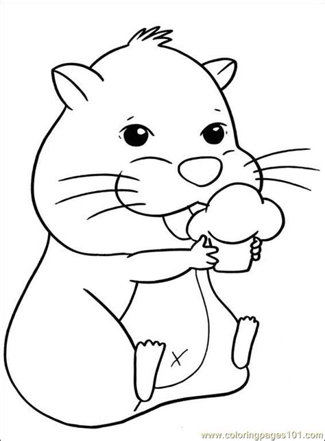 Coloring Page Hamster by Hamster Coloring Pages To Print Coloring Pages
