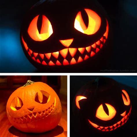 awesome cat pumpkin carving ideas art halloween