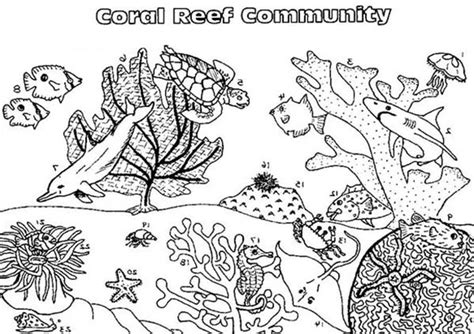 Pages Coral Reef Scene Coloring Pages Coral Reef Coloring Page