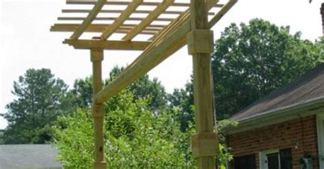 kiwi trellis design trellis we made for our kiwi plants to grow up also a