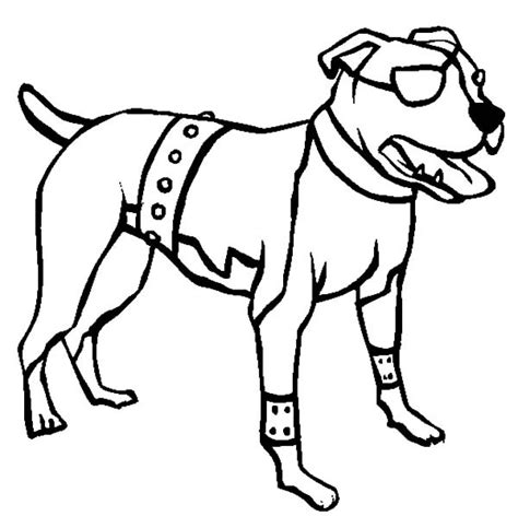 coloring pages pitbull puppies free coloring pages of drawing pitbull